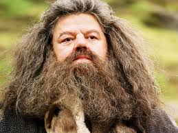 Furniture Guy/Father figure. I'm sorry this happened Hagrid